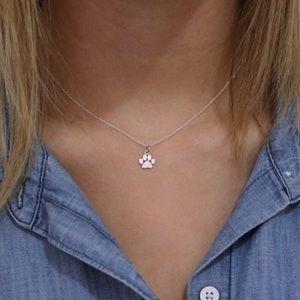 Jewelry - 🆕 Paw Print Dainty Necklace